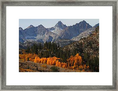 Autumn In Bishop Canyon In The Eastern Sierras Framed Print by Jetson Nguyen