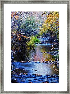 Autumn In Boise Idaho Framed Print by Vishwanath Bhat