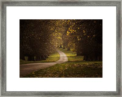 Autumn In Calke Abbey Framed Print by Chris Fletcher
