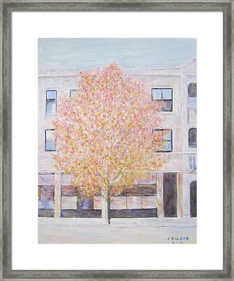 Autumn In Chicago Framed Print