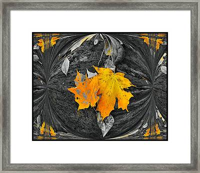Autumn In Color Framed Print by Dan Sproul
