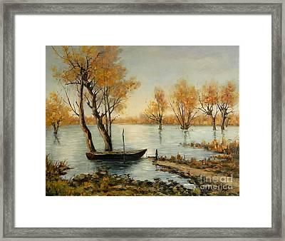 Autumn In Delta Framed Print by Petrica Sincu