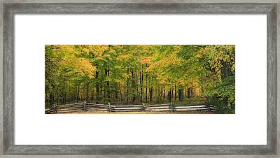 Autumn In Door County Framed Print by Adam Romanowicz