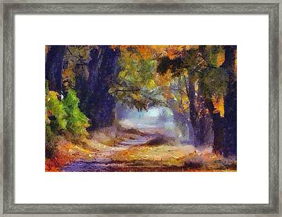 Framed Print featuring the painting Autumn In Forest by Georgi Dimitrov