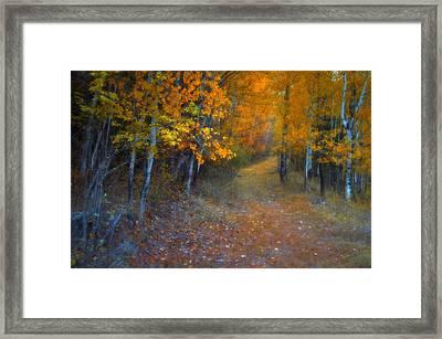 Autumn In Grand Forks Framed Print by Tara Turner
