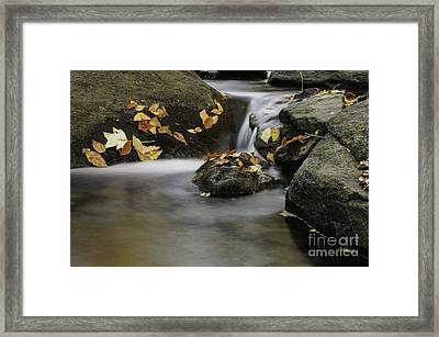 Autumn In Hackelbarney II Framed Print