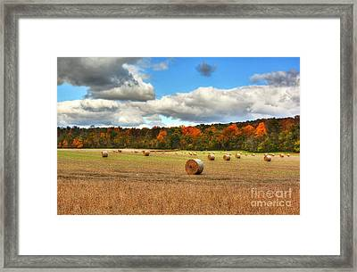 Autumn In Indiana Framed Print by Mel Steinhauer