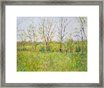 Autumn In Kentucky Framed Print