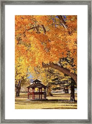 Autumn In La Veta Framed Print by Pattie Calfy