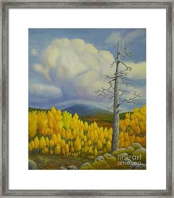 Autumn In Lapland Framed Print by Veikko Suikkanen