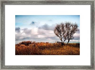 Autumn In Maine Framed Print by Bob Orsillo