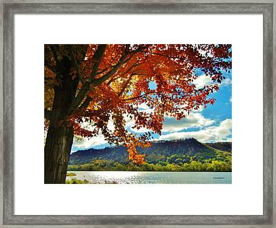 Autumn In Minnesota Framed Print