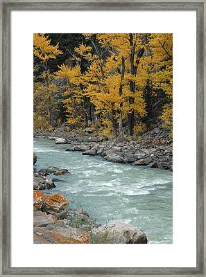 Autumn In Montana's Gallatin Canyon Framed Print by Bruce Gourley