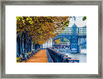 Autumn In Moscow Gorky Park Framed Print by Alexander Senin
