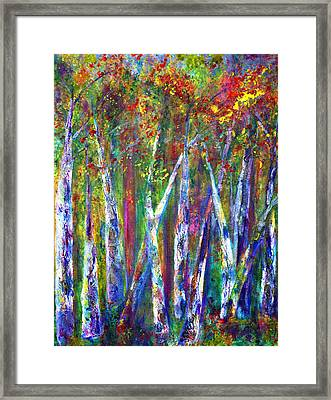 Autumn In Muskoka Framed Print