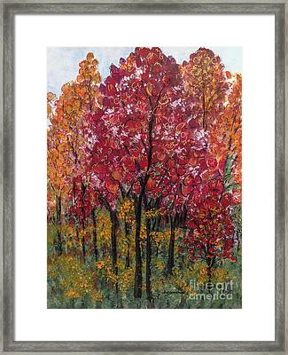 Autumn In Nashville Framed Print
