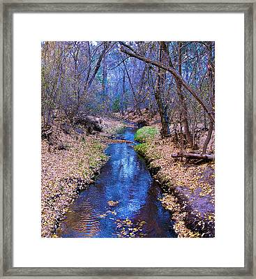 Framed Print featuring the photograph Autumn In New Mexico by John Babis