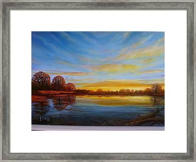 Autumn In Richmond Park. Framed Print by Janet Silkoff
