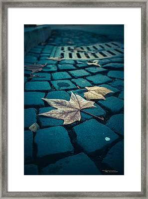 Autumn In Roma Framed Print