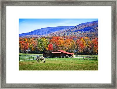 Autumn In Rural Virginia  Framed Print by Lynn Bauer