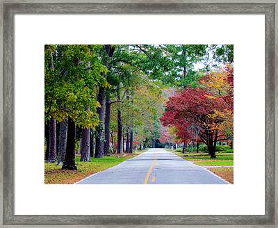 Autumn In The Air Framed Print by Cynthia Guinn