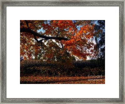 Autumn In The Country Framed Print by Inspired Nature Photography Fine Art Photography