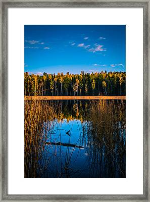 Framed Print featuring the photograph Autumn In The Kootenays by Rob Tullis