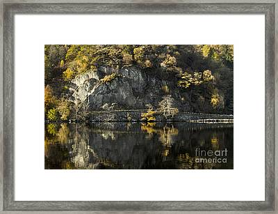 Autumn In The Lake Framed Print