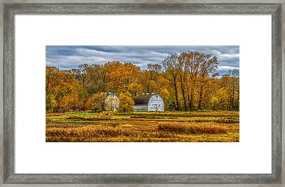 Autumn In The Meadows Framed Print
