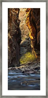 Autumn In The Narrows Framed Print by Andrew Soundarajan