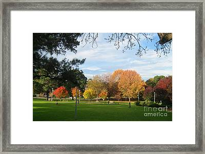 Framed Print featuring the photograph Autumn In The Park by Leanne Seymour
