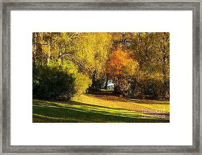 Autumn In The Park Framed Print by Lutz Baar