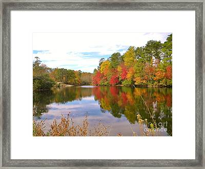 Autumn In The South Framed Print