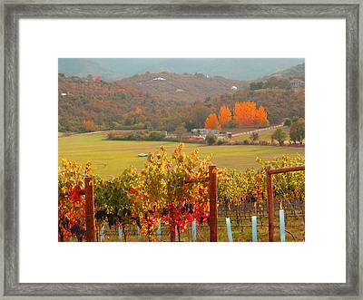 Framed Print featuring the photograph Autumn In The Valley by Brooks Garten Hauschild