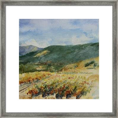 Harvest Time In Napa Valley Framed Print by Maria Hunt