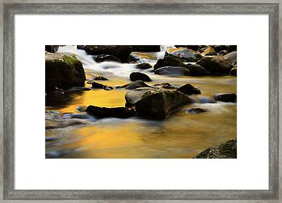 Autumn In The Water Framed Print