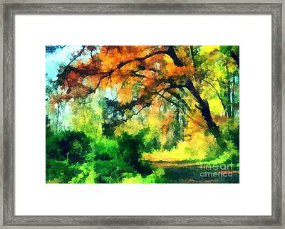 Autumn In The Woods Framed Print by Odon Czintos