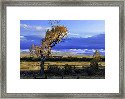 Autumn In Wyoming Framed Print