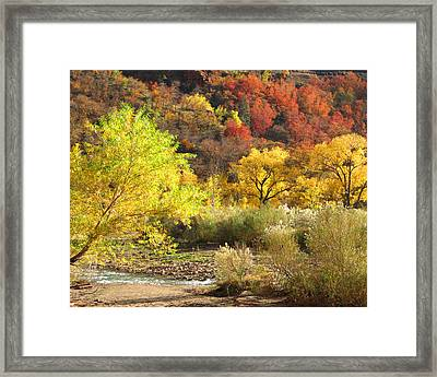 Framed Print featuring the photograph Autumn In Zion by Alan Socolik