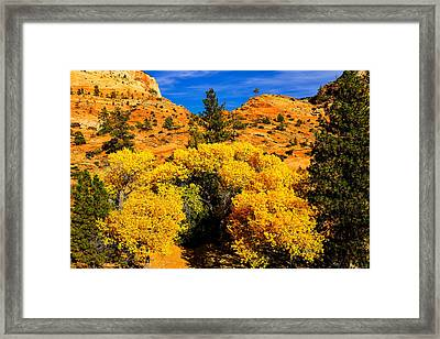 Framed Print featuring the photograph Autumn In Zion by Greg Norrell