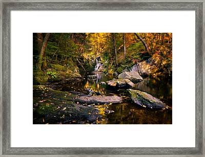 Autumn Is Calling Framed Print