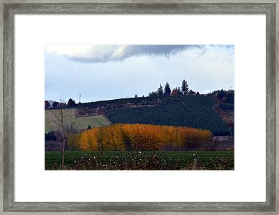 Autumn Framed Print by Jeri lyn Chevalier