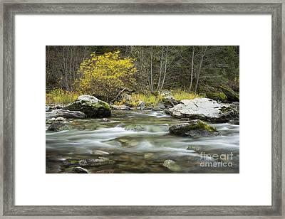Autumn Joe Framed Print by Idaho Scenic Images Linda Lantzy