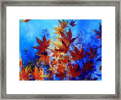 Autumn Joy Framed Print by Hanne Lore Koehler