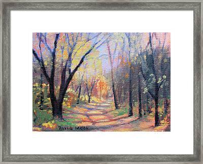 Autumn Kaleidoscope Framed Print by Bonnie Mason