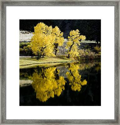 Autumn Lake Reflection Framed Print by Patrick Derickson