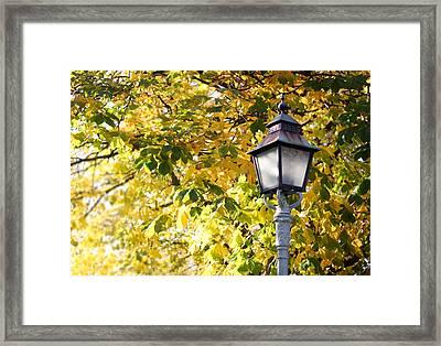 Autumn Lamp Post Framed Print