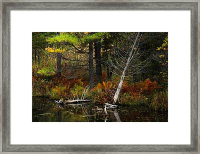Framed Print featuring the photograph Autumn Landscape 1 by Jim Vance