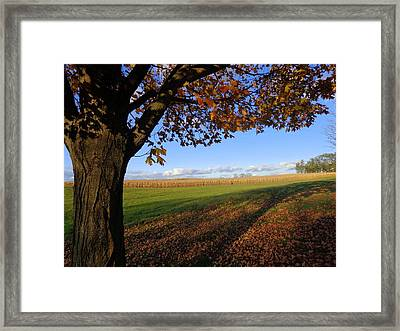 Autumn Landscape Framed Print by Joseph Skompski