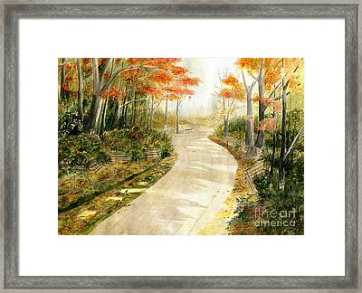 Autumn Lane Framed Print by Melly Terpening